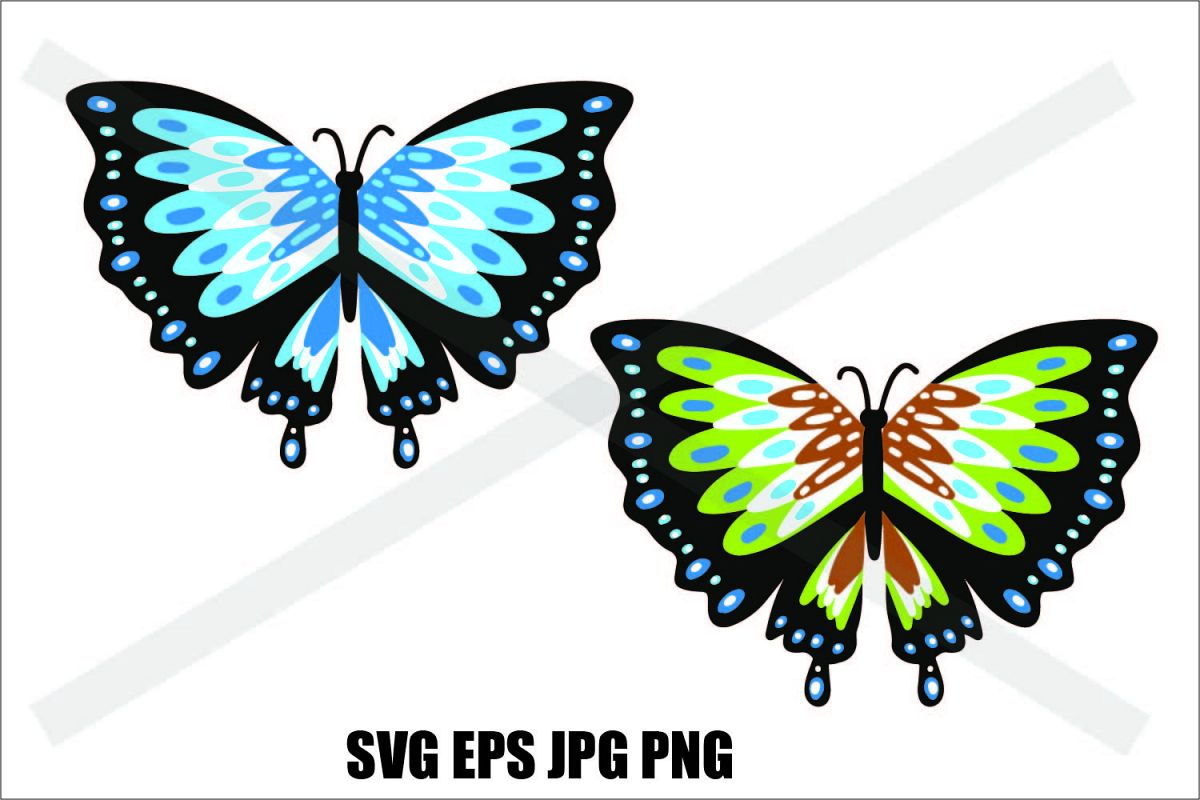 Butterfly Two Types - SVG-EPS-JPG-PNG example image 1