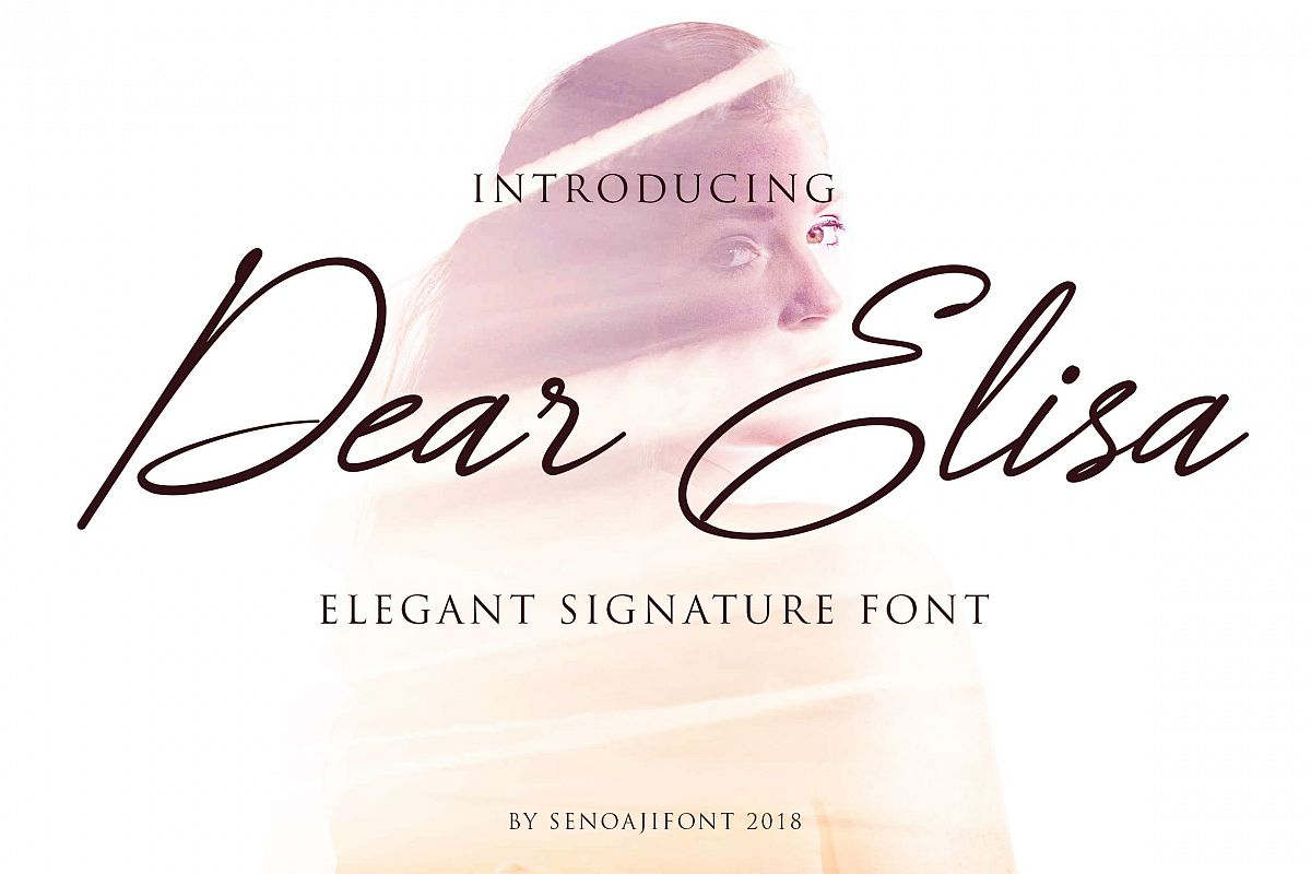 Dear Elisa example image 1