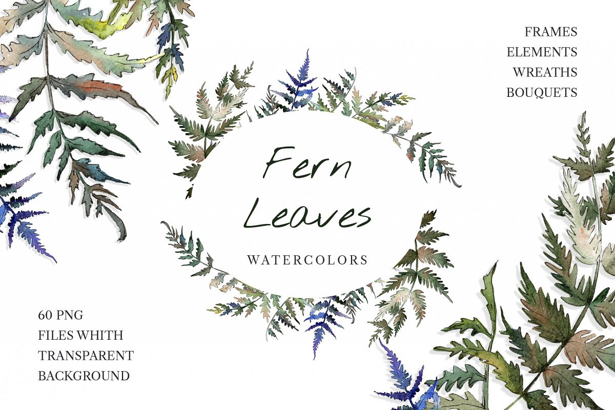 Fern leaf clipart watercolor png example image 1