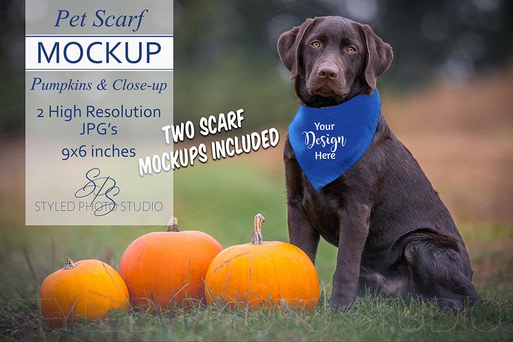 Dog Scarf Mockup, Pumpkin Scene & Closeup Pet Scarves 2 9x6