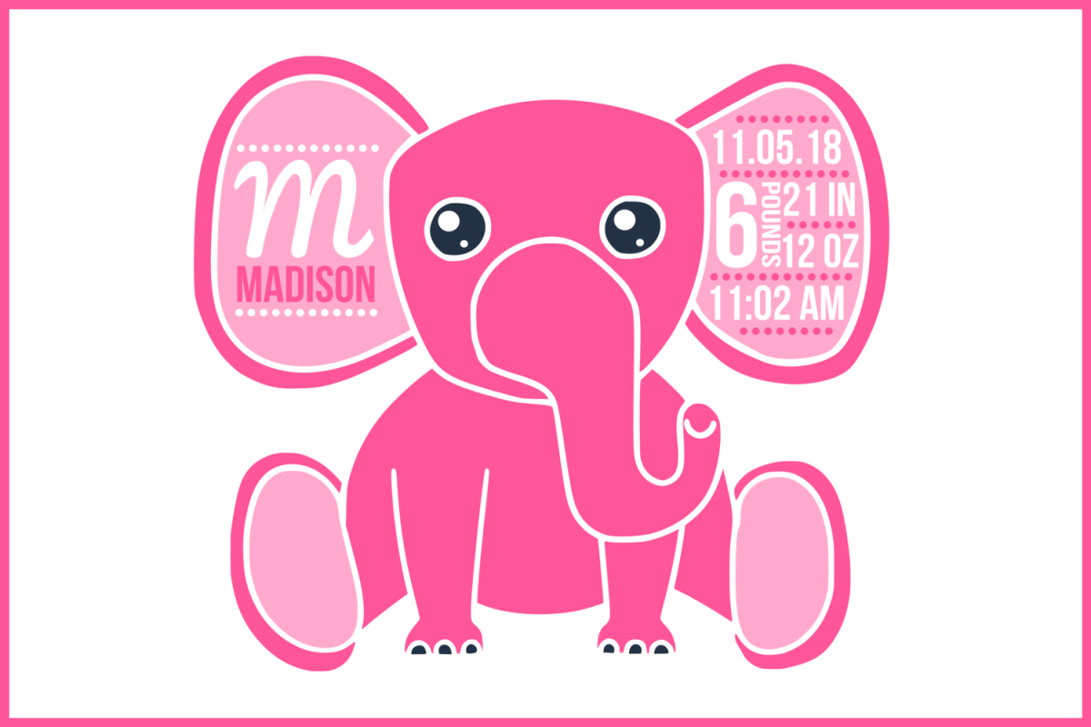 Birth stats svg, birth stats template, baby stats svg, svg example image 1