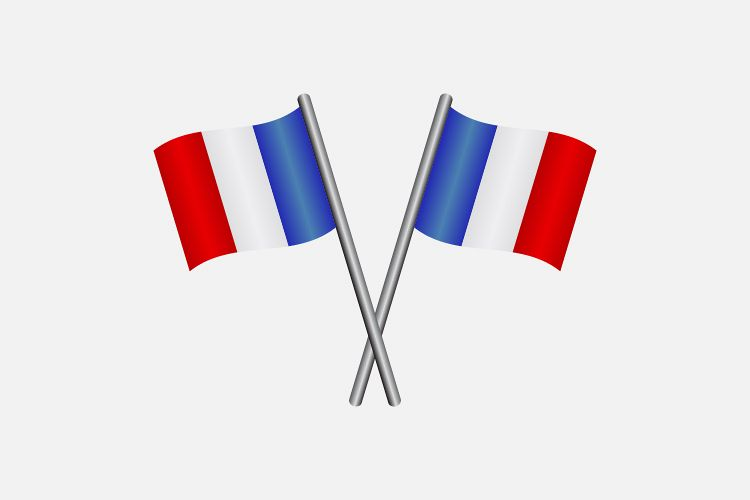 France flag example image 1