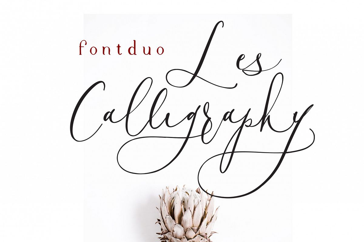 Les Calligraphy Font Duo example image 1
