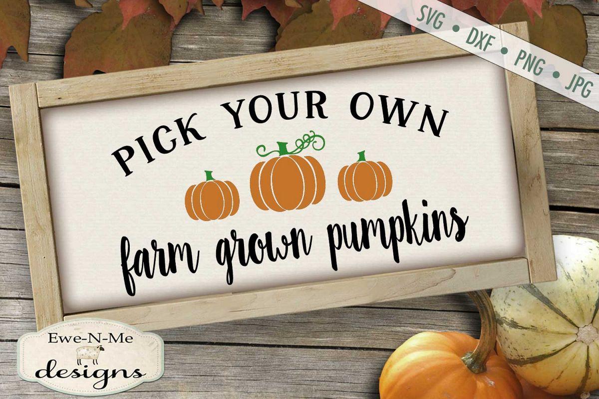 Pick Your Own Farm Grown Pumpkins Svg Dxf Files 228309 Cut Files Design Bundles