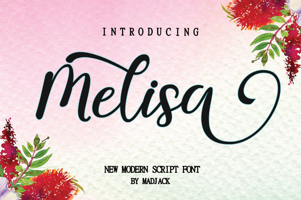 melisa script example image 1