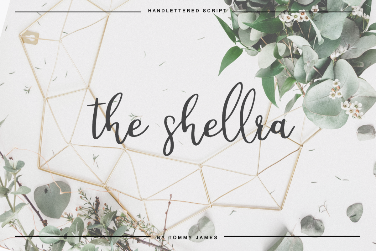 the shellra example image 1