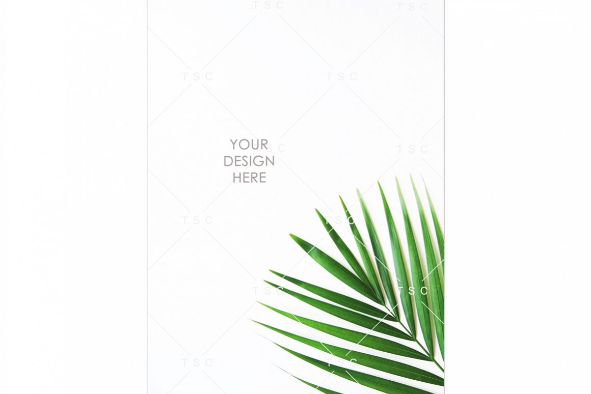 Portrait-mode Palm Leaf Stock Photo example image 1