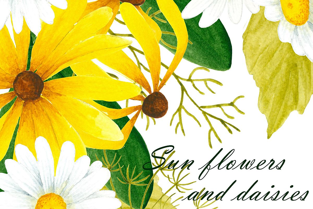 Black Eyed Susan And Daisy Flower Clipart