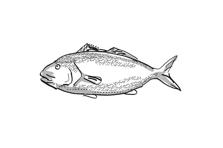 Blue Moki New Zealand Fish Cartoon Retro Drawing example image 1