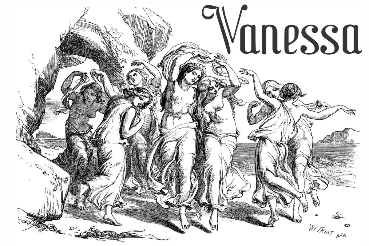 Vanessa example image 1