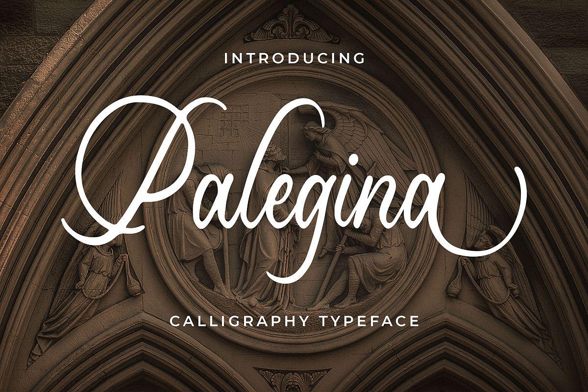 Palegina Calligraphy Typeface example image 1