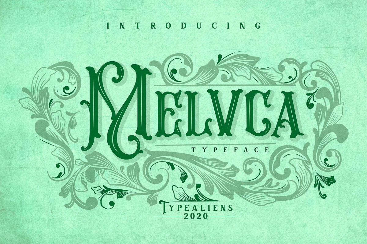 Melvca example image 1