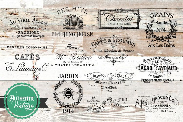 Vintage Bundle PNG, EPS, SVG Vector French Graphics example image 1