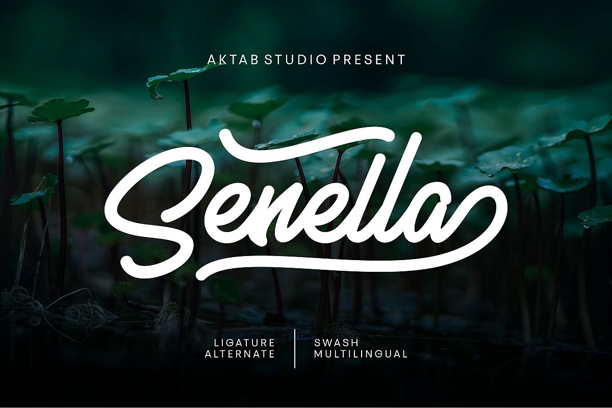 Senella Script Font example image 1