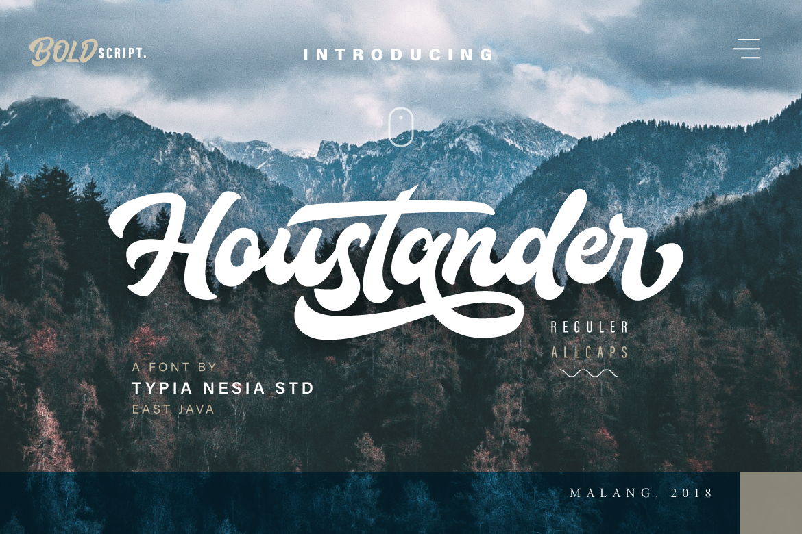 Houstander font duo example image 1