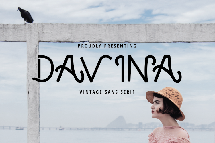 DAVINA example image 1