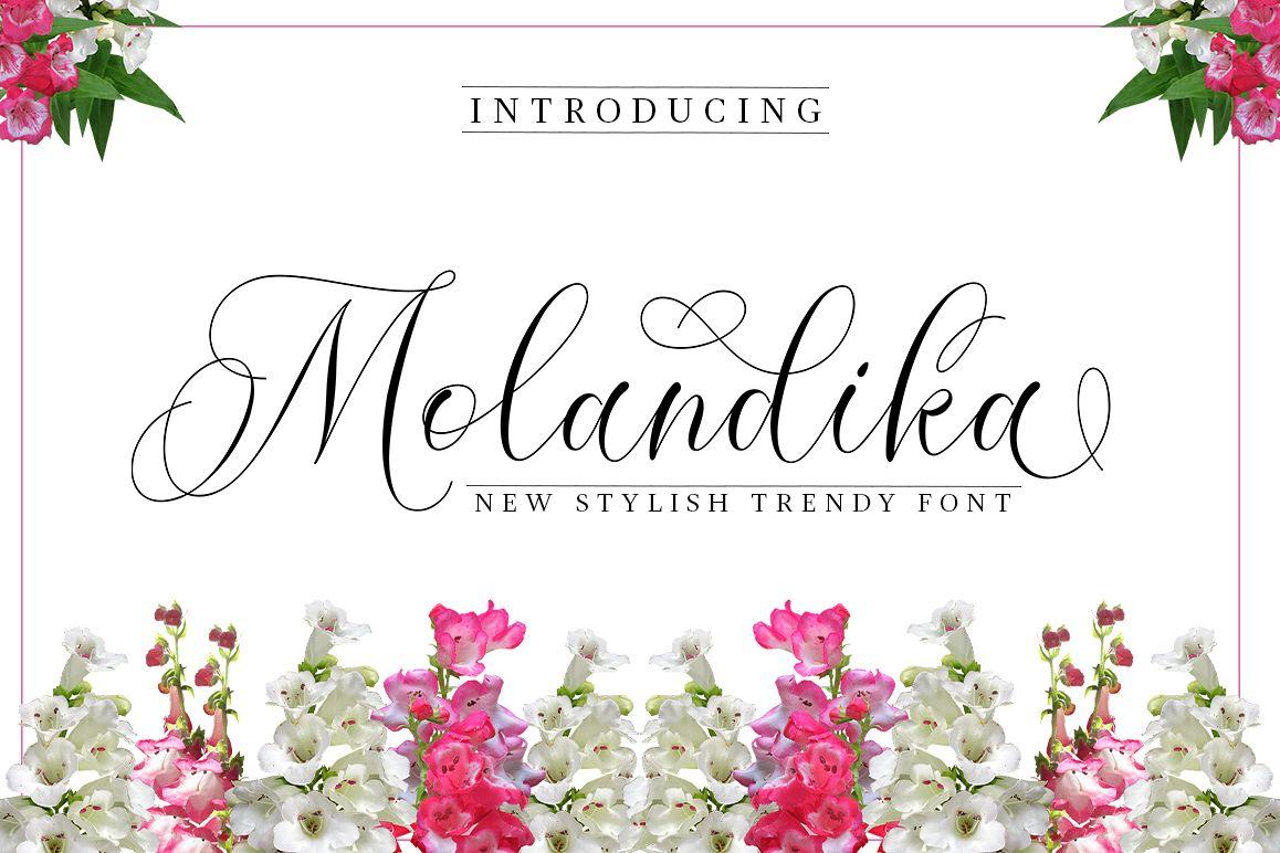 Molandika Script - Elegant Font example image 1