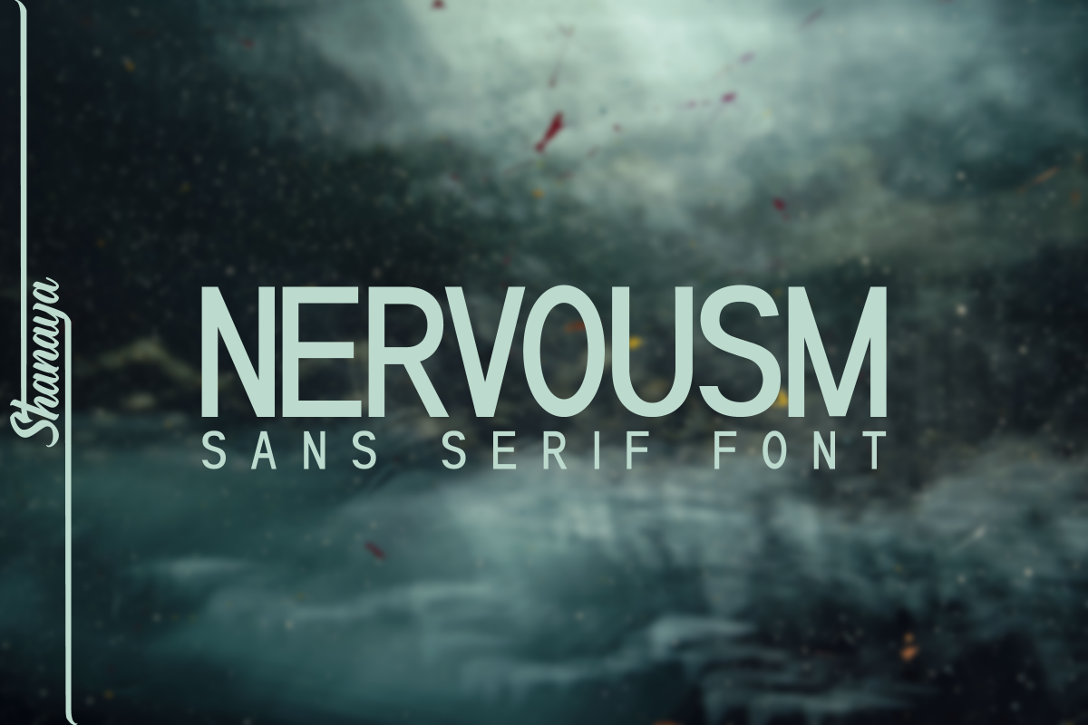 NERVOUSM Font UPDATE  Elegant San Serif Style example image 1