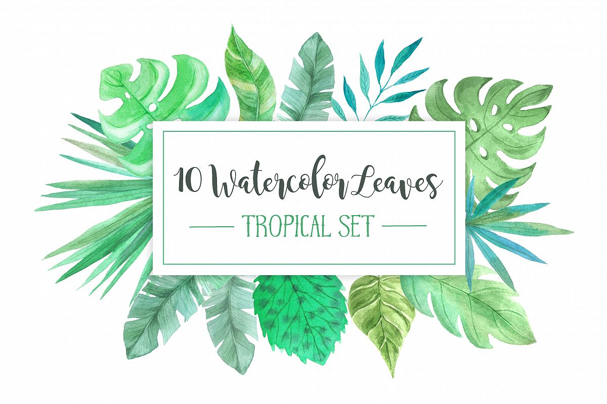 Watercolor Tropic Leaves Set example image 1