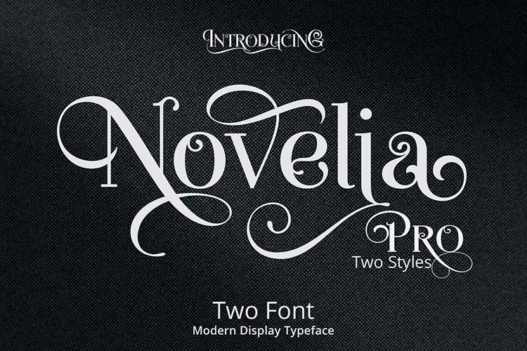 Novelia Pro example image 1