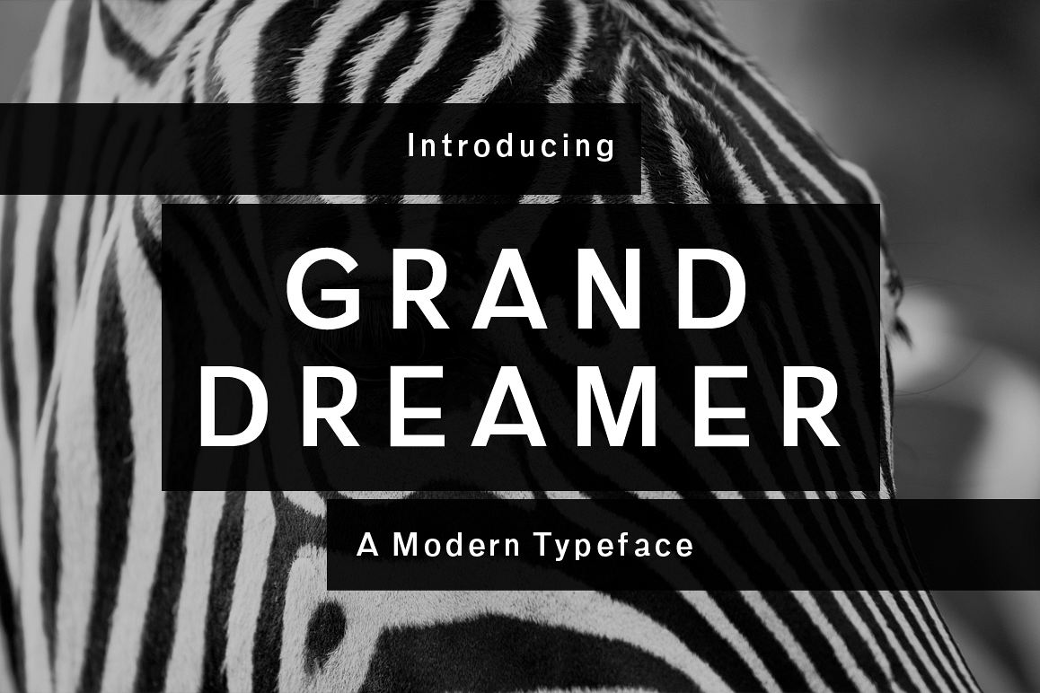 Grand Dreamer example image 1
