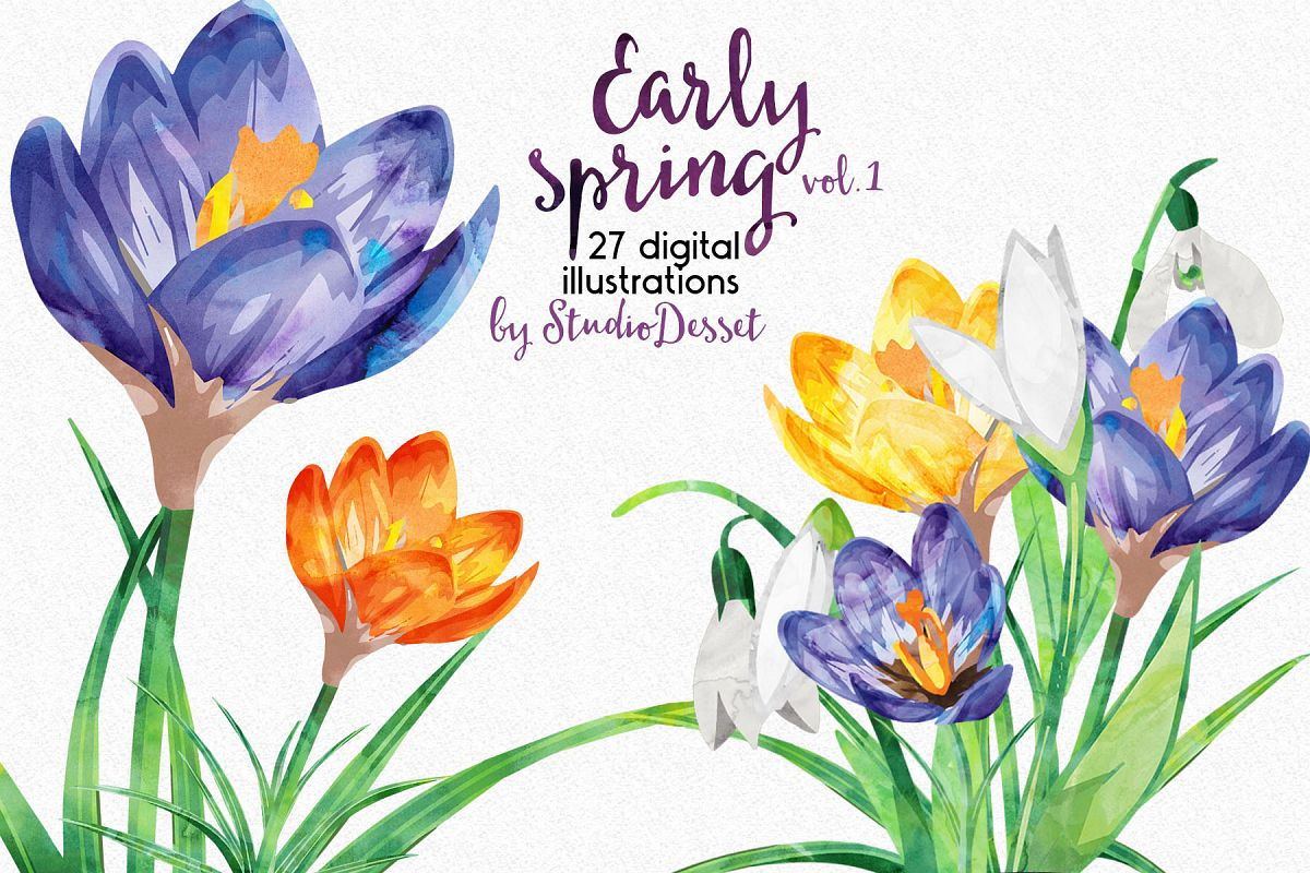 Early Spring Flowers Watercolor Illustrations