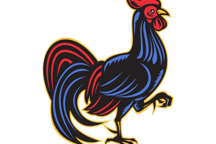 rooster cockerel marching side woodcut example image 1