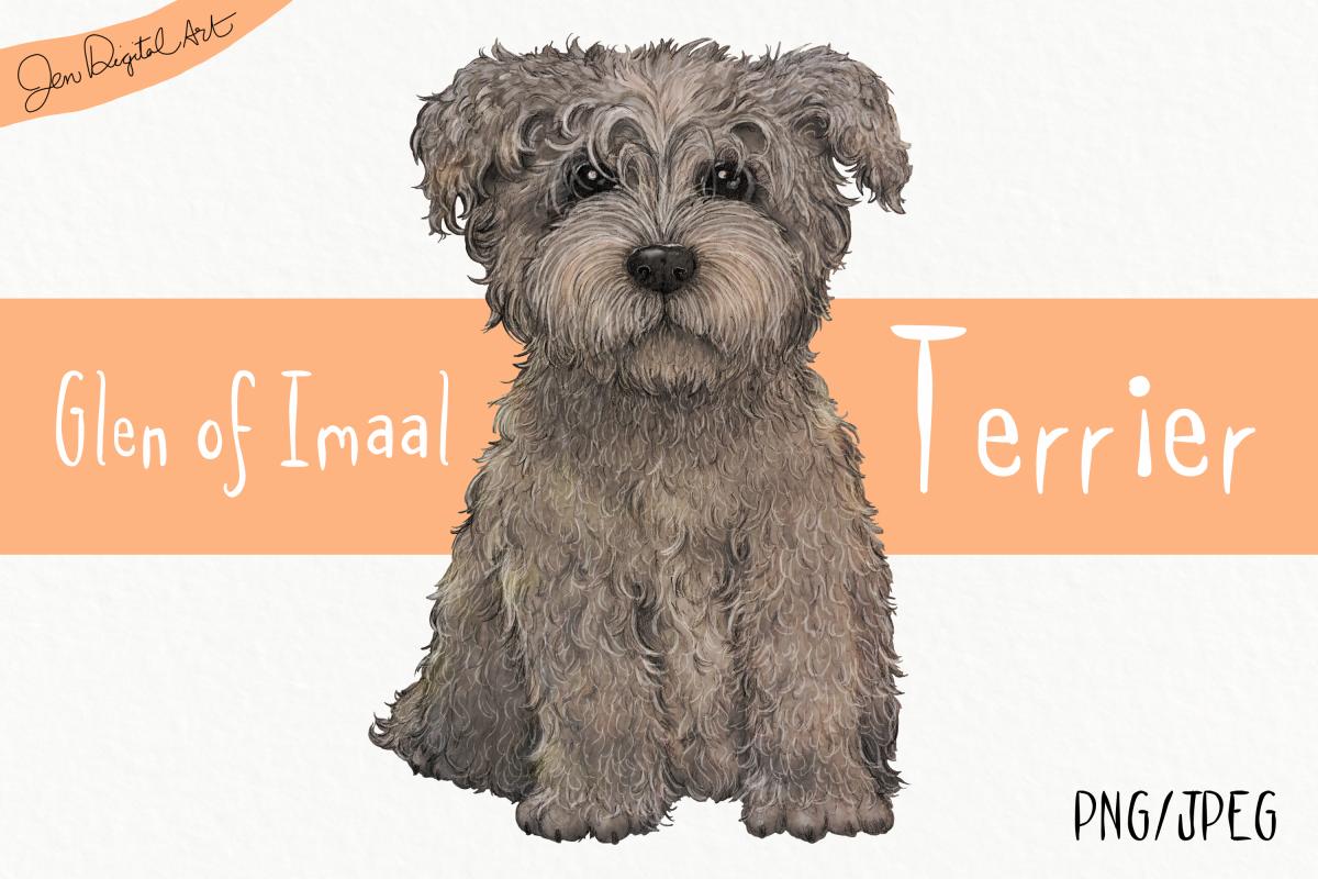 Glen Of Imaal Terrier Grey Clip Art Dog Illustration