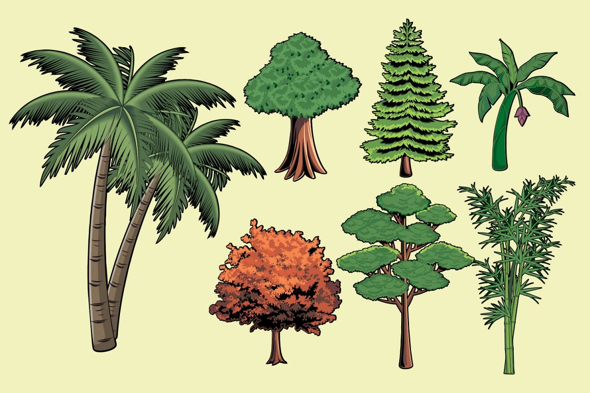 Trees Vector Pack example image 1