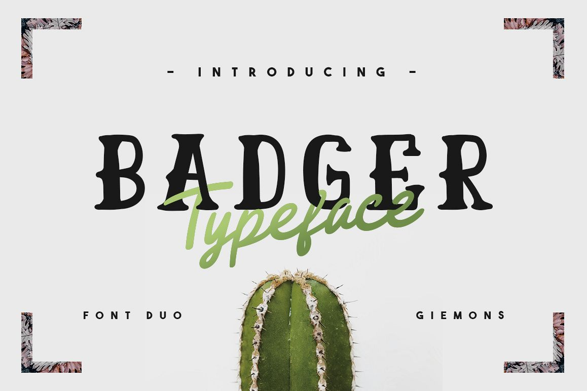 Badger Font Duo example image 1