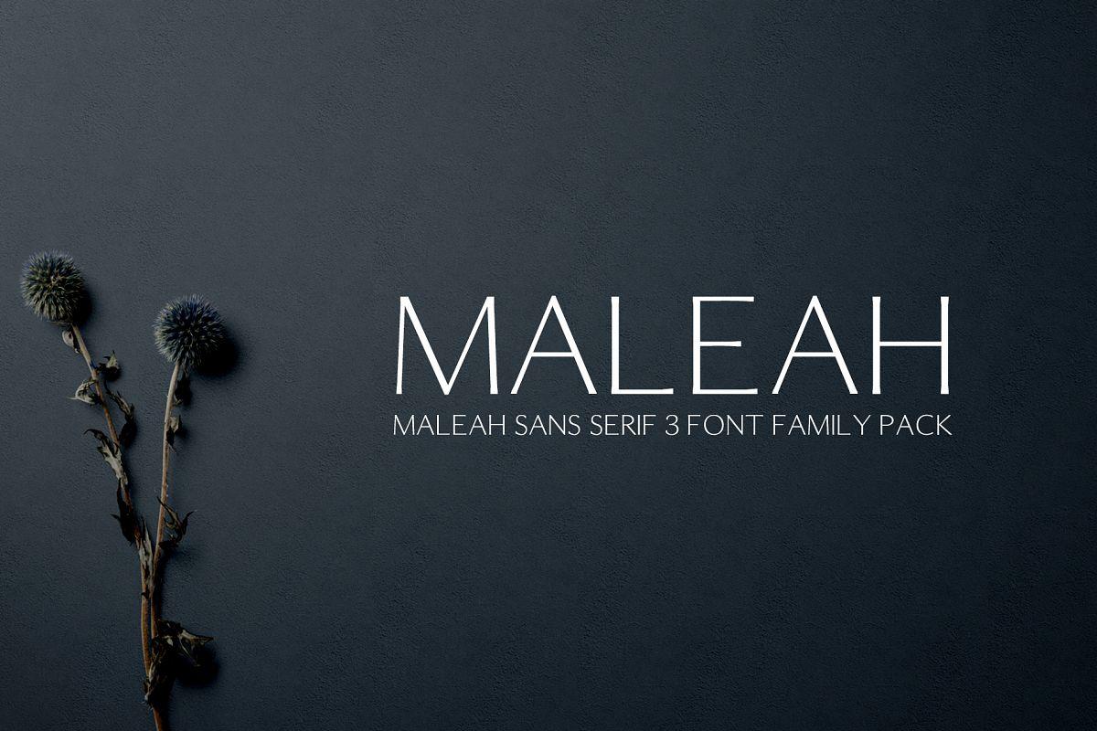 Maleah Sans Serif 2 Font Family Pack example image 1