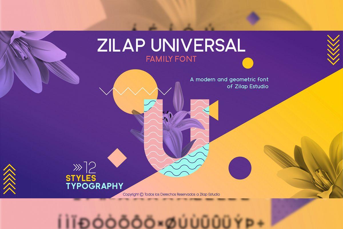 Zilap Universal example image 1