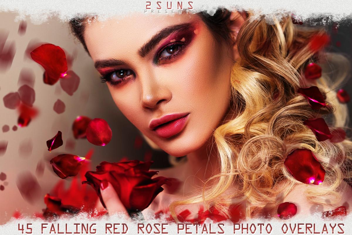 Falling Rose Petals Photo Overlays , Rose Petals, Red Rose example image 1