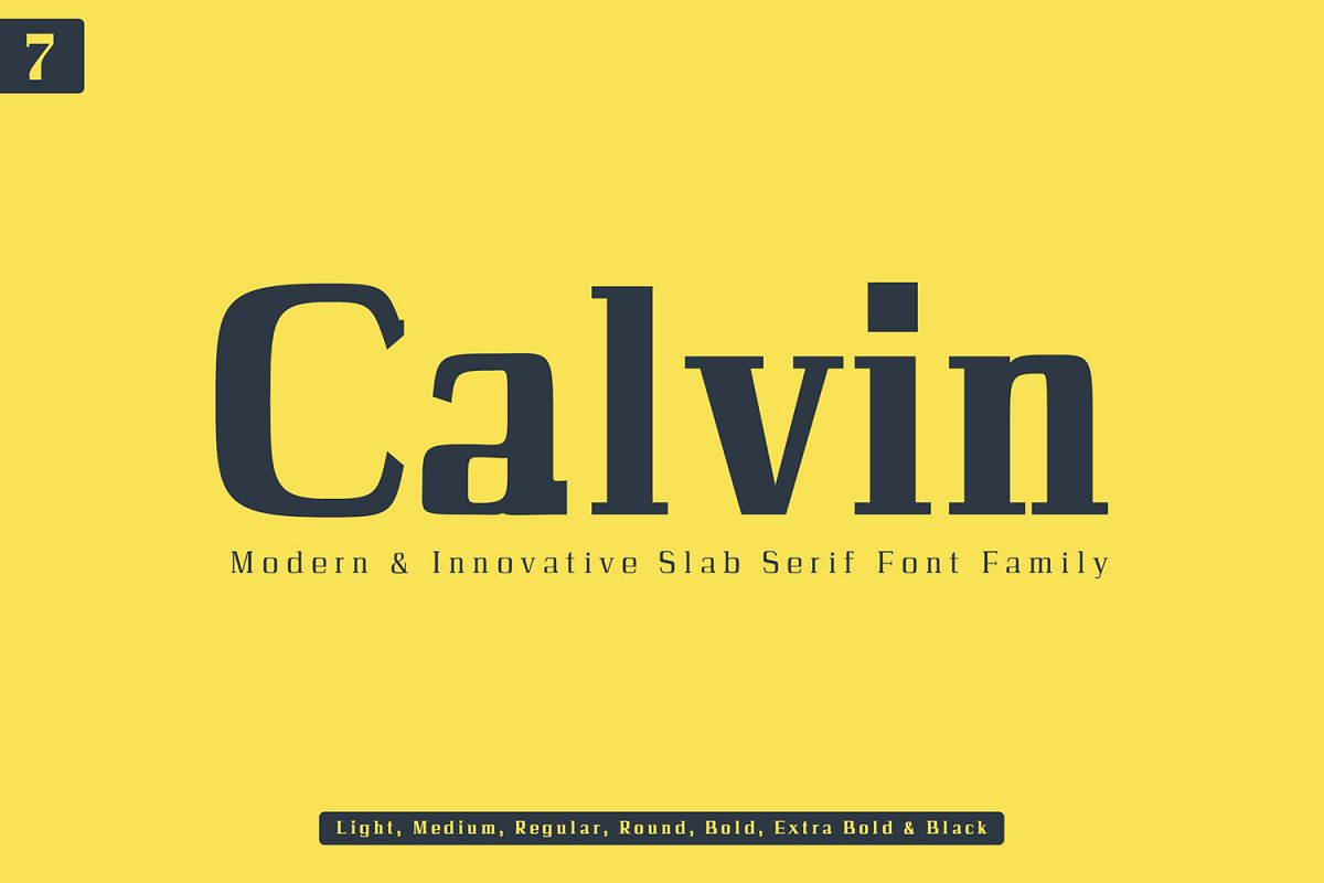 Calvin Slab Serif Font Family example image 1