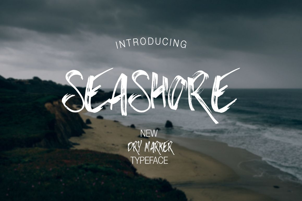 Seashore example image 1