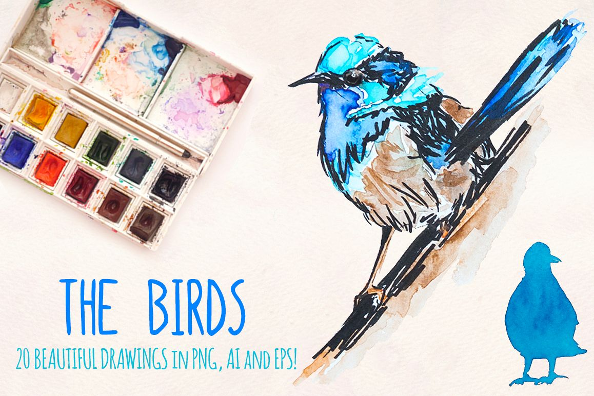 20 Colorful Fancy Bird Watercolor Graphics example image 1