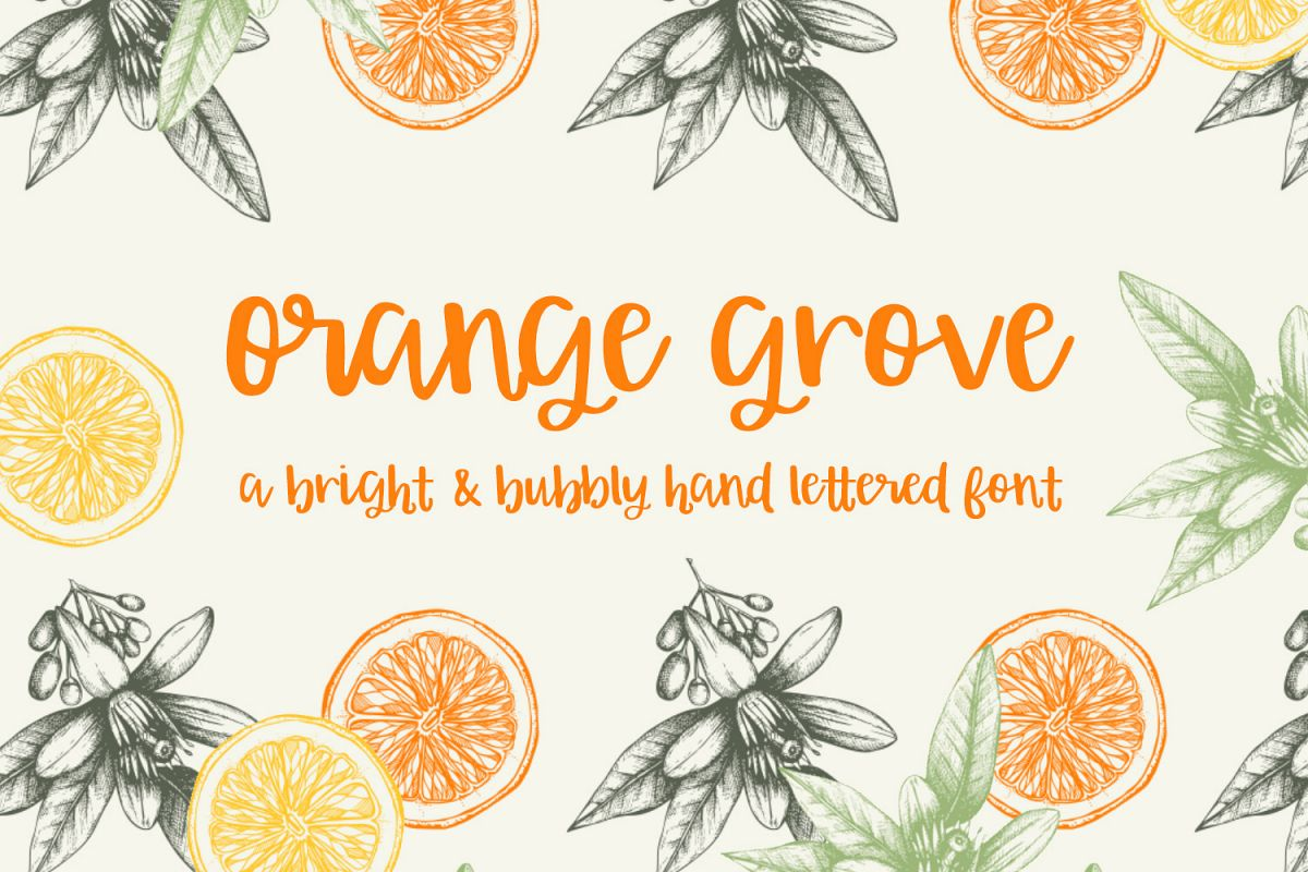 Orange Grove Script example image 1