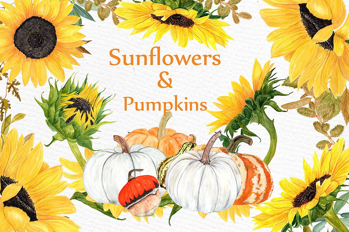 Watercolor Sunflower clipart example image 1