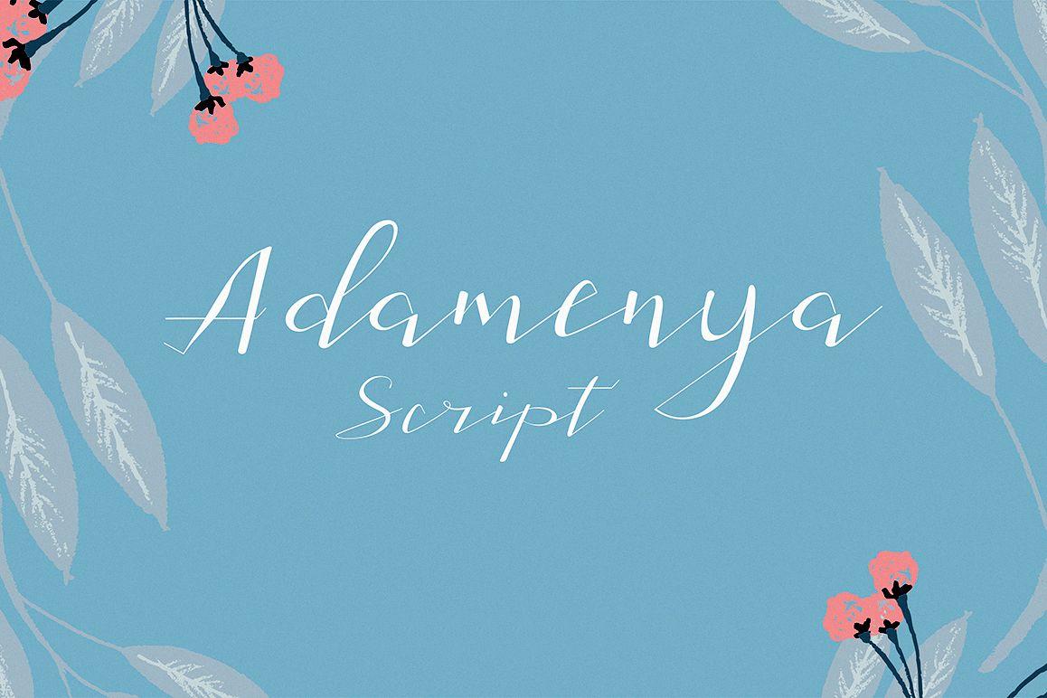 Adamenya Script example image 1