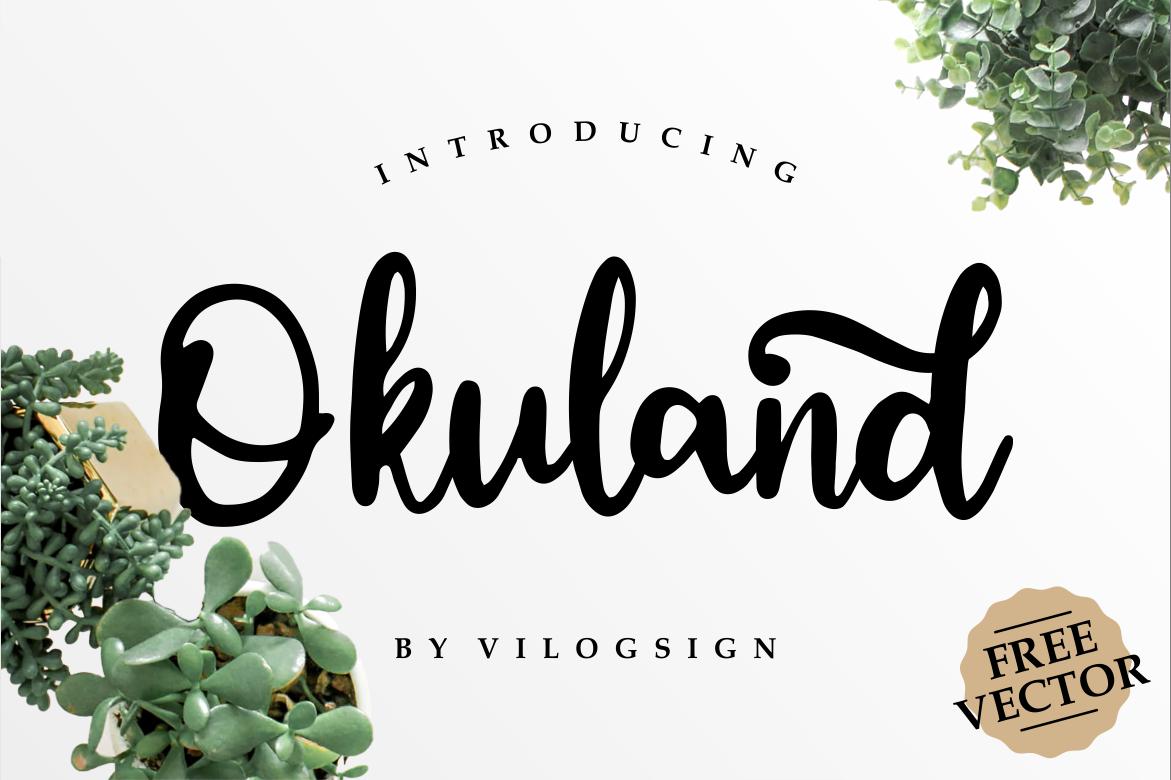 Okuland // Luxury Script Font example image 1