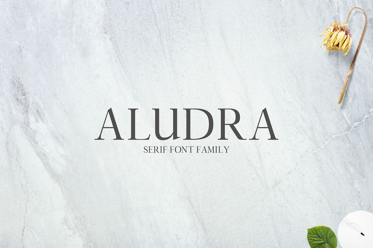 Aludra Serif 12 Font Family Pack example image 1