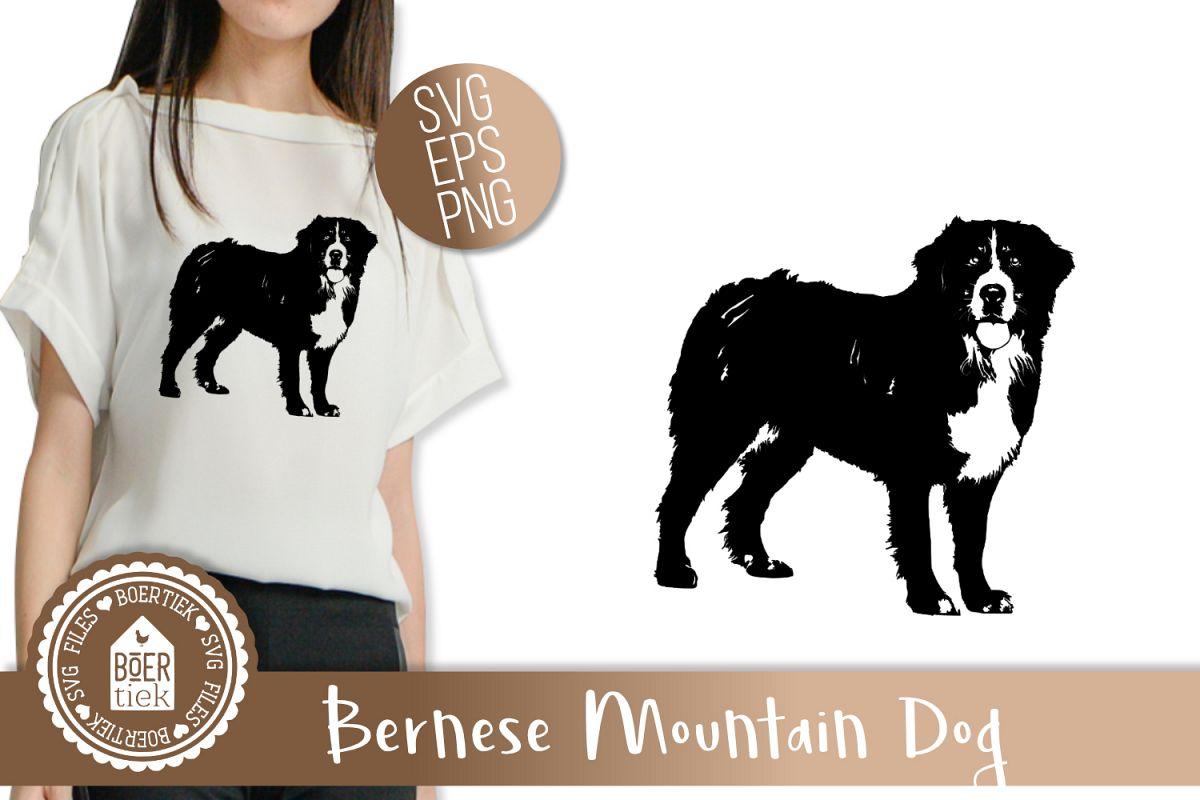 Bernese mountain dog example image 1