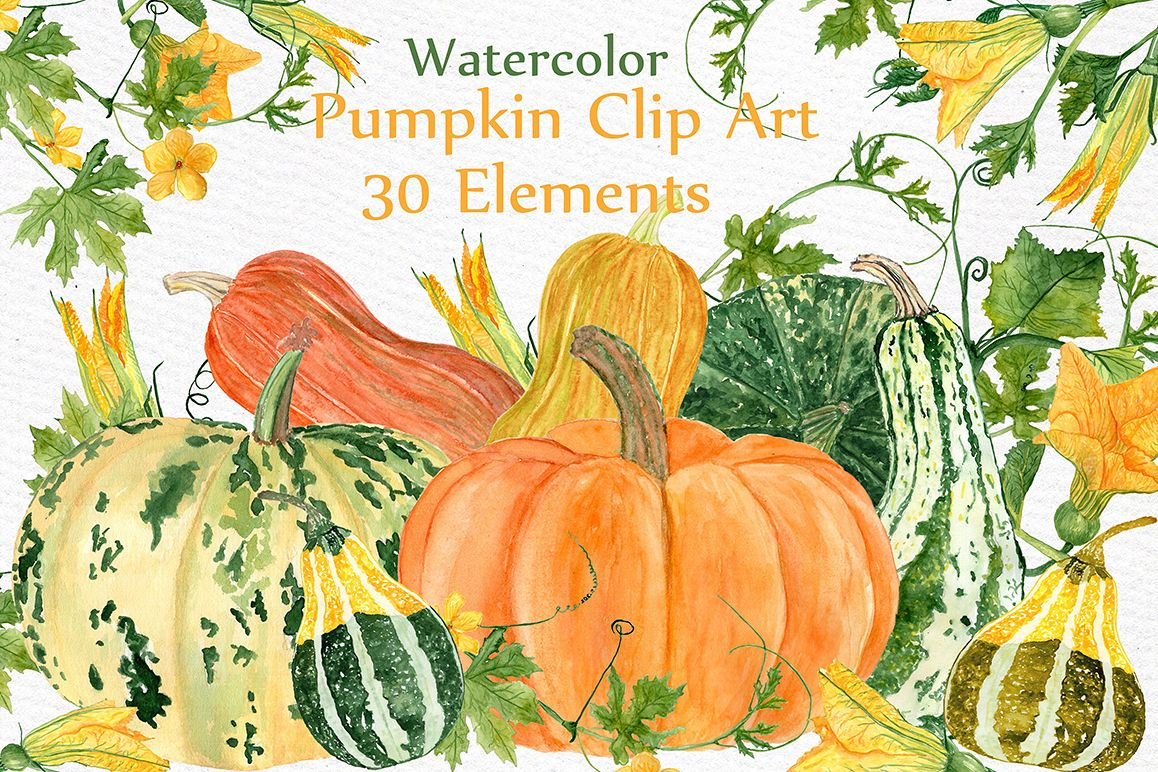 Watercolor pumpkin clipart example image 1