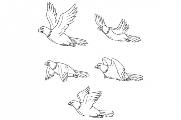 Eagle Flying Side Cartoon Collection Set example image 1