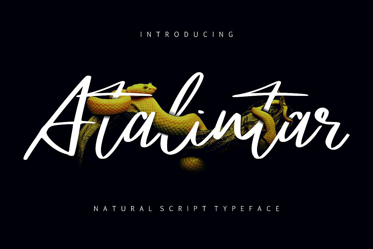 Atalintar | Natural Script Typeface example image 1