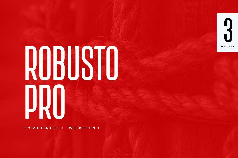 Robusto Pro Modern Typeface WebFont example image 1