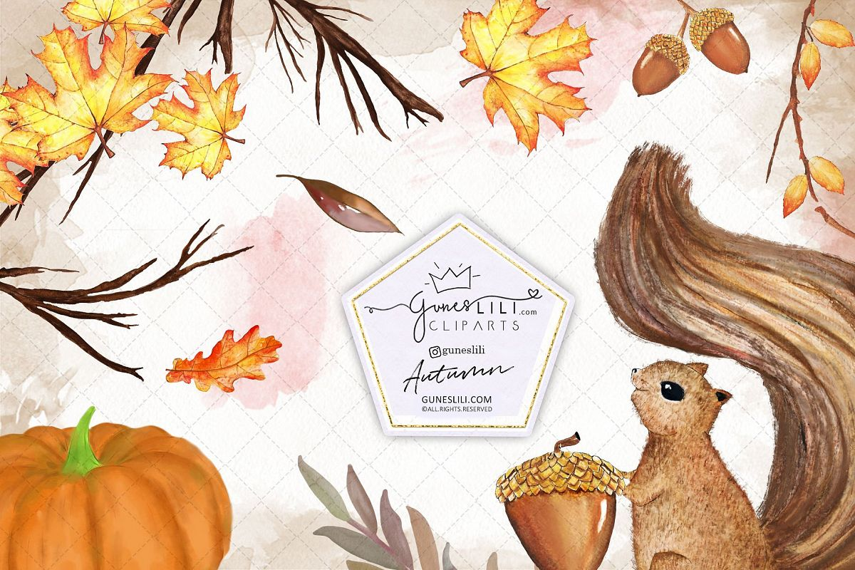 Watercolor Autumn Clipart Hand Painted Fall Graphics example image 1