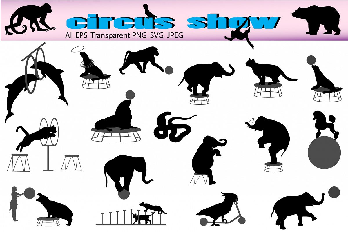 Circus show example image 1