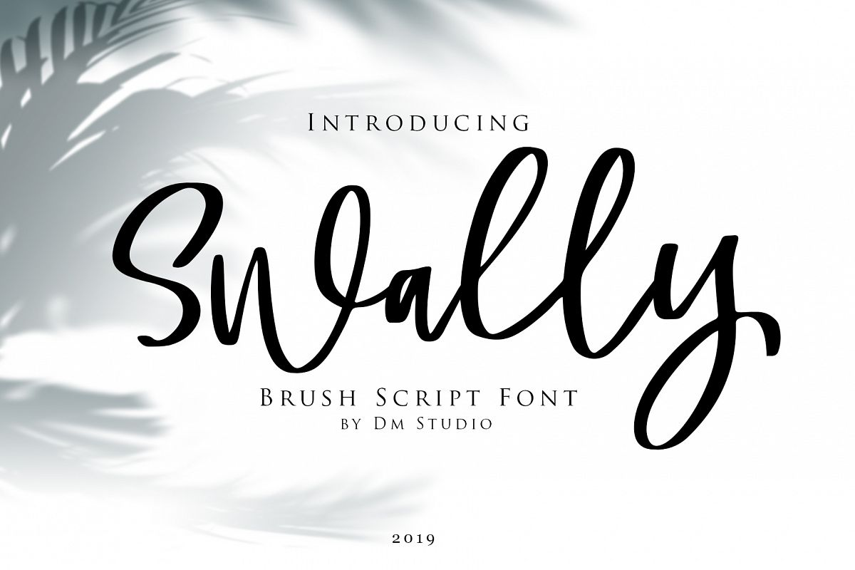 Swally - Brush Script Font example image 1