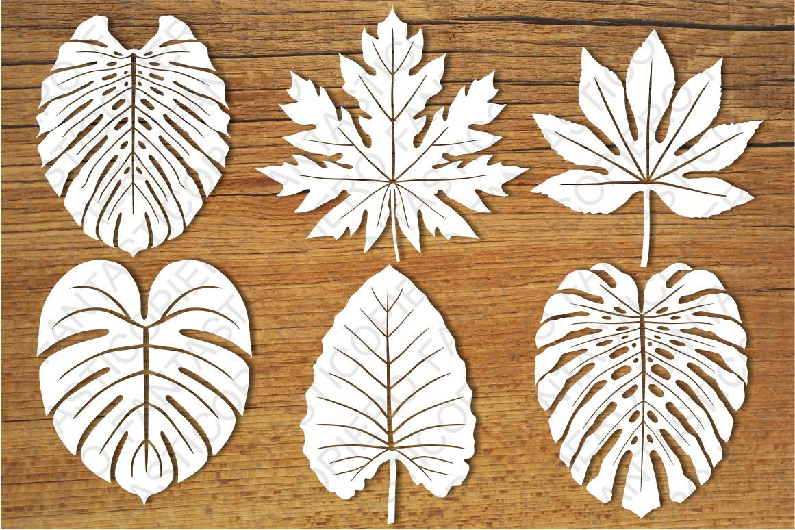 Tropical Leaves set1 SVG files for Silhouette and Cricut. example image 1